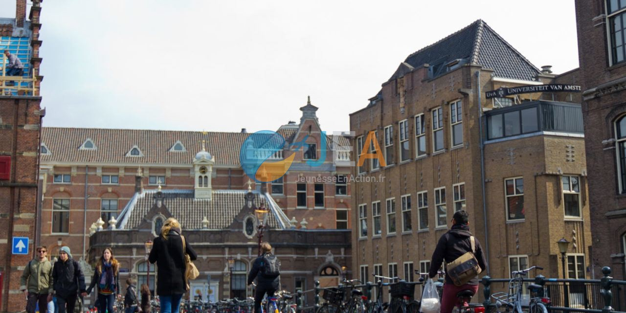 Université des Pays-Bas