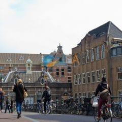 Université Pays-Bas